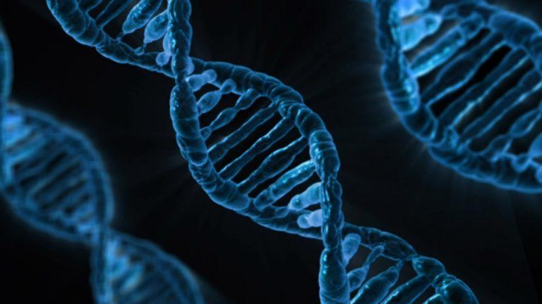 DNS-sel is feltörhető a számítógép
