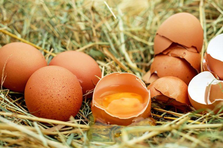 Újabb szennyezett tojások Magyarországon