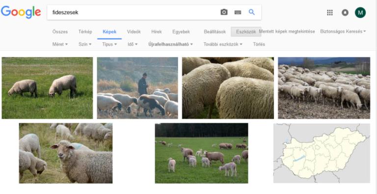 A Google szerint a fideszesek birkák