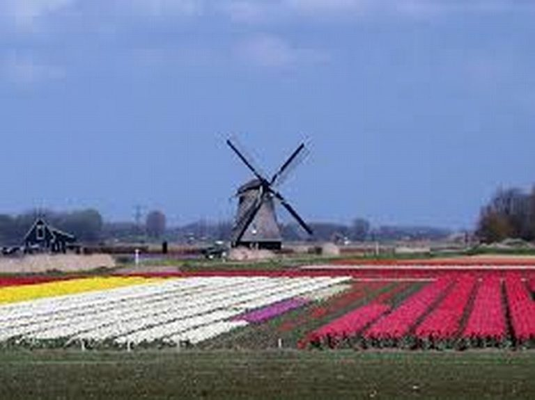 Hollandia – országismertető