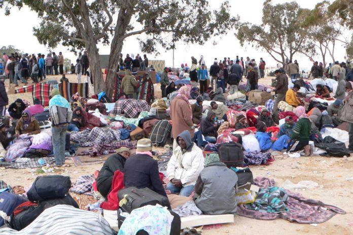 migránsok