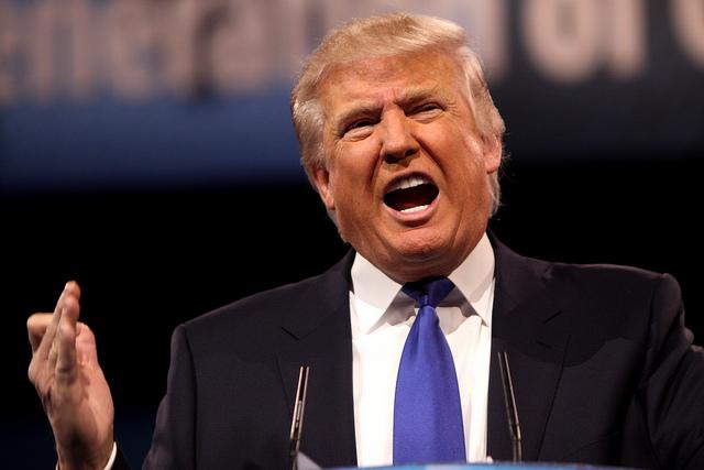 Trumpnak ítélt a bíróság