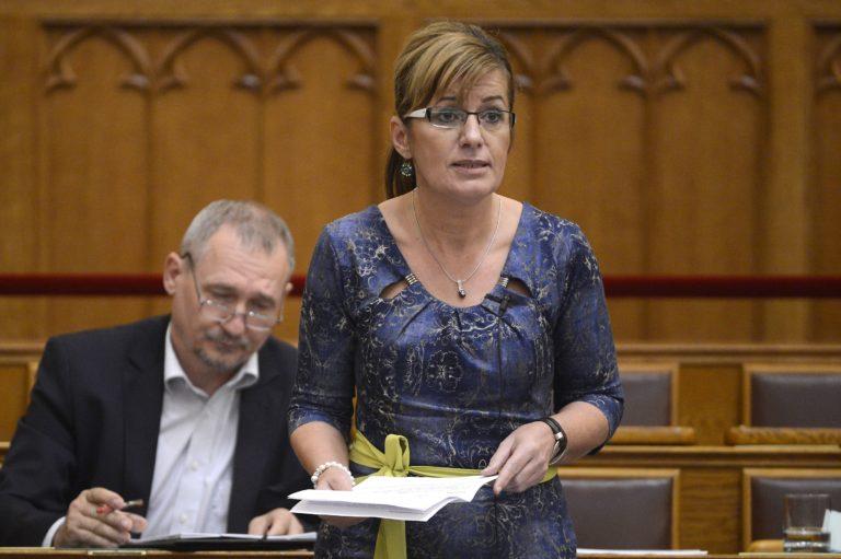 Az MSZP-s jelölt visszalépett Németh Szilárd körzetében