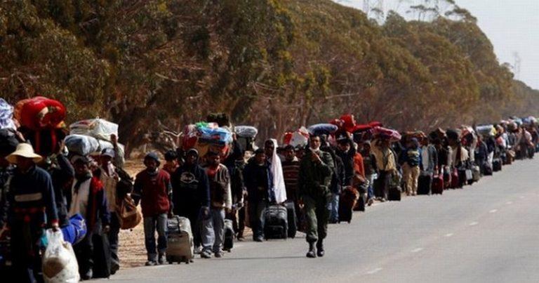 A kormány migránsai