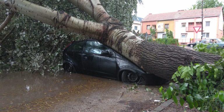 Vajdaság: tetőket tépett le, fákat döntött ki, autókat borított fel a vihar