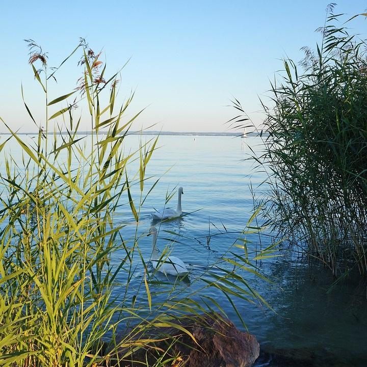 2018-ban is kiváló volt a Balaton vízminősége