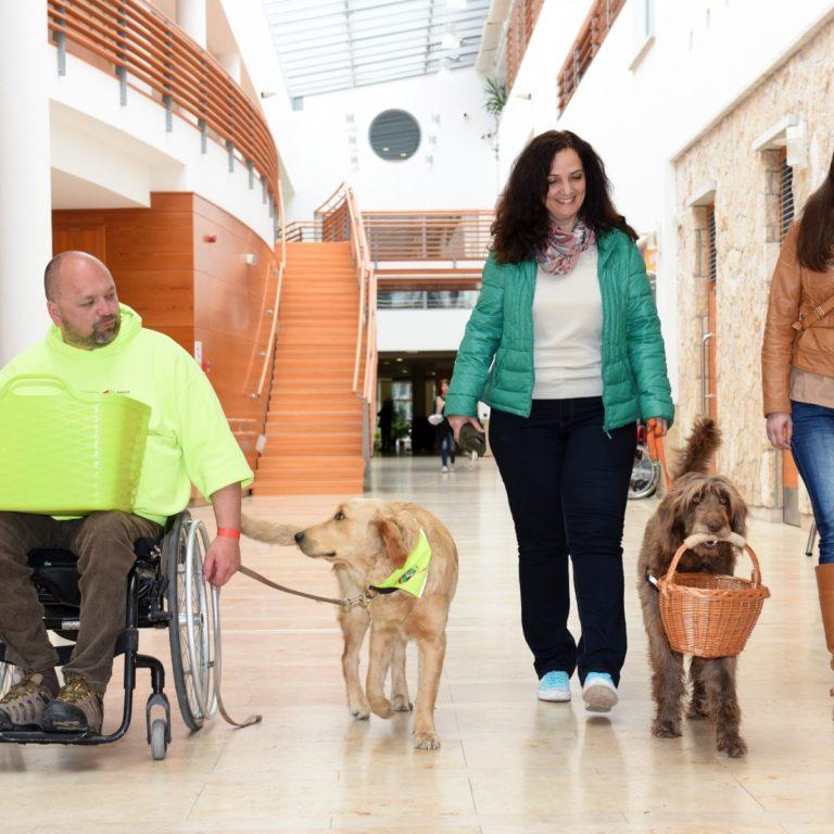 Feleannyi fogyatékkal élőt alkalmaznak, mint amennyit kellene