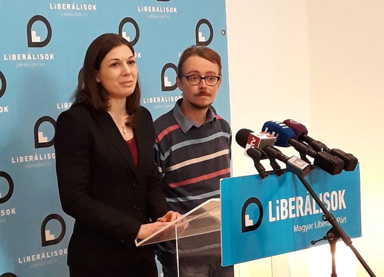 Chladek Tibor, a liberális közös jelölt