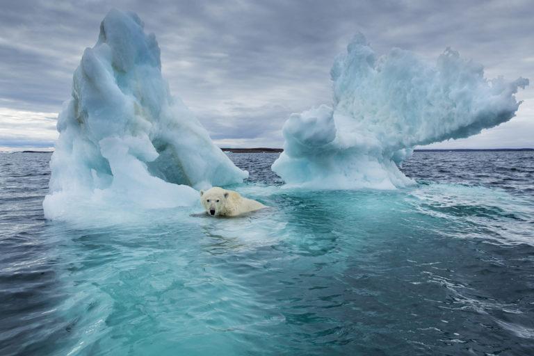 EP: klímavészhelyzet!