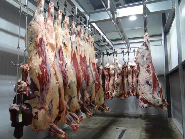 40%-al csökkent a marhahús felvásárlási ára