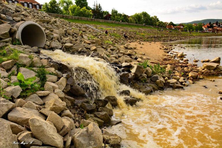 Változó víruskoncentráció a szennyvízekben