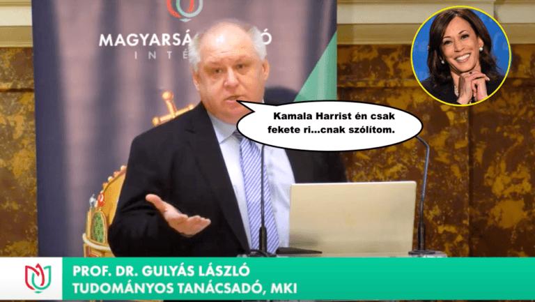 """Andy Landy mosolyalbuma – A """"homo NERicus"""", (by Gábor György) lapáton…"""