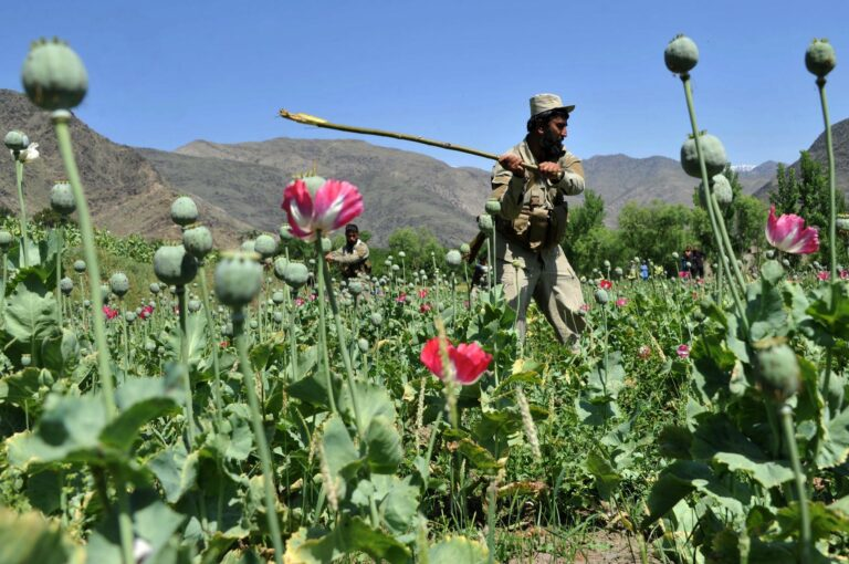 Pénzügyi csőd Afganisztánban?